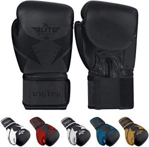 Elite Sports Star Kickboxing Muay Thai Gloves