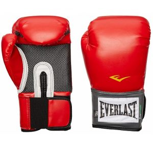 Everlast Pro Best Boxing Gloves For Heavy Bag