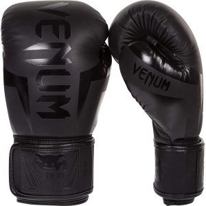 Venum Best Boxing Gloves